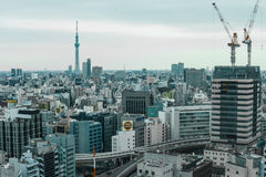 Formi dalla finestra, Tokyo, Giappone Fotografie Stock