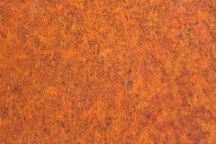 Formica de son de rouille Photos stock