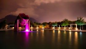 Formierni taca na sztucznym jeziorze Zdjęcia Royalty Free