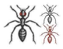 formiga na cor e monótonos pode usar-se para o logotipo do esporte Fotografia de Stock Royalty Free