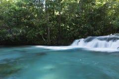 Formiga vattenfall Royaltyfri Bild