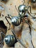 Formigas de aço Fotografia de Stock Royalty Free