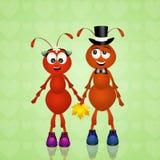 Formigas no amor Imagem de Stock