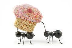 Formigas que carreg o queque, conceito Fotografia de Stock