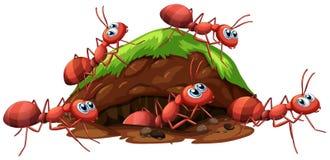 Formigas vermelhas e furo de um fogo ilustração royalty free