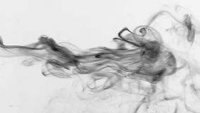 Formless jet of black smoke for design, on white background. Abstract smoke background stock video
