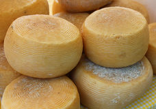 Forms of cheese. Some forms of cheese in the market Stock Image