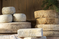 Forms of various cheeses Stock Photos