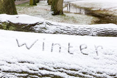 Formułuje zimę pisać w śniegu na dębowym drzewnym bagażniku Fotografia Royalty Free