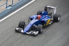 Formuła 1: Felipe Nasr Obraz Royalty Free
