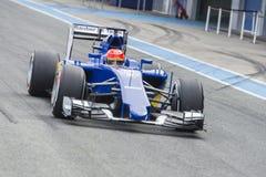 Formuła 1: Felipe Nasr Fotografia Stock