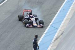 Formuła 1: Max Verstappen Zdjęcie Stock