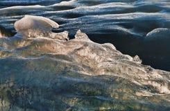 Formulários do gelo marinho foto de stock