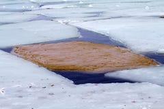 Gelo marinho Fotos de Stock