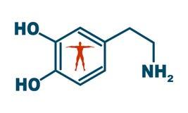 Formula hormone dopamine. Chemical molecular formula hormone dopamine. Infographics. illustration. Man silhouette royalty free illustration