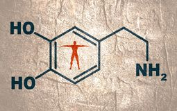 Formula hormone dopamine. Chemical molecular formula hormone dopamine. Infographics illustration. Man silhouette royalty free illustration
