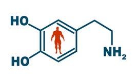 Formula hormone dopamine. Chemical molecular formula hormone dopamine. Infographics illustration. Man silhouette stock illustration