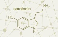 Formula hormone serotonin. Chemical molecular formula hormone serotonin. Infographics illustration royalty free illustration