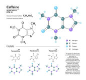 Formula molecolare e modello chimici strutturali di caffeina Gli atomi sono rappresentati come sfere con la codifica mediante col royalty illustrazione gratis