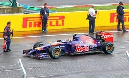 Formula One Hungarian Grand Prix Stock Image