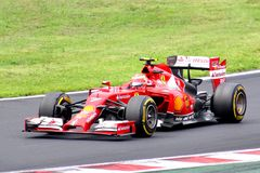 Formula One Hungarian Grand Prix Stock Photography