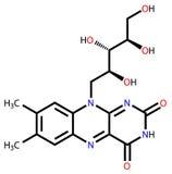 Formula strutturale della riboflavina Immagini Stock