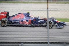 2014 Formule 1 Monza Toro Rosso - Daniil Kvyat Stock Afbeelding