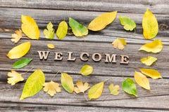Formulera välkomnandet på en träbakgrund, ramen av gula sidor Royaltyfria Bilder