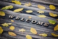 Formulera välkomnandet på en träbakgrund, ramen av gula sidor Royaltyfri Foto