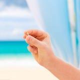 Fornal daje pierścionkowi zaręczynowemu jego panna młoda Ślubna ceremonia o Zdjęcie Royalty Free