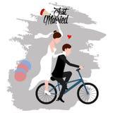 Fornal i panna młoda na bicyklu tylko para za mąż royalty ilustracja