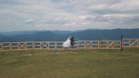 Fornal z panną młodą siedzi na płotowych pobliskich halnych wzgórzach Powietrzny trutnia strza? zdjęcie wideo