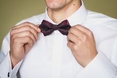 Fornala ` s łęku krawat Zdjęcia Royalty Free