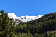 Forni glacier mountain panorama in Ortler Alps, Stelvio National Park Stock Images
