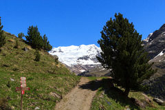 Forni glacier mountain panorama, signpost and hiking path in Ortler Alps Stock Photo
