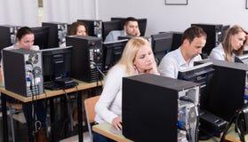Fornisca la seduta agli scrittori e l'esame di personale degli schermi del PC Immagine Stock