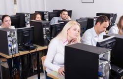 Fornisca la seduta agli scrittori e l'esame di personale degli schermi del PC Fotografia Stock Libera da Diritti