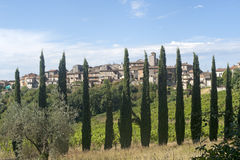 Fornole (Umbria, Italy) - Old town and cypresses Stock Photos