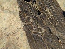 Forntida argali och hjortar, petroglyphs Arkivfoton