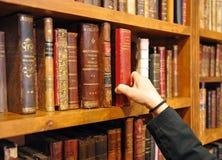 Forntida böcker, bokhandel, arkiv royaltyfria foton