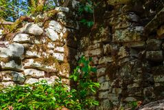 Forntida bakgrund - fördärvar i djungeln fotografering för bildbyråer