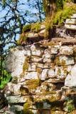 Forntida bakgrund - fördärvar i djungeln royaltyfri fotografi