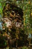 Forntida bakgrund - fördärvar i djungeln arkivbilder