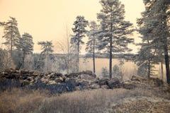 Forntida befästning Fotografering för Bildbyråer