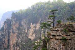 forntida berg zhangjiajie Royaltyfri Bild