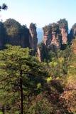 forntida berg zhangjiajie Fotografering för Bildbyråer