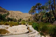 Forntida bevattning i Oman Arkivfoton