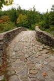 forntida bro Arkivbilder