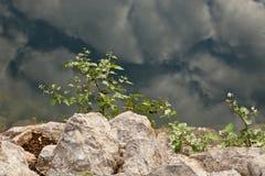 Forntida brunn 2 Fotografering för Bildbyråer