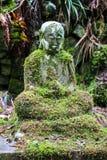 Forntida Buddhastaty i grön mossa i en skog Royaltyfri Foto